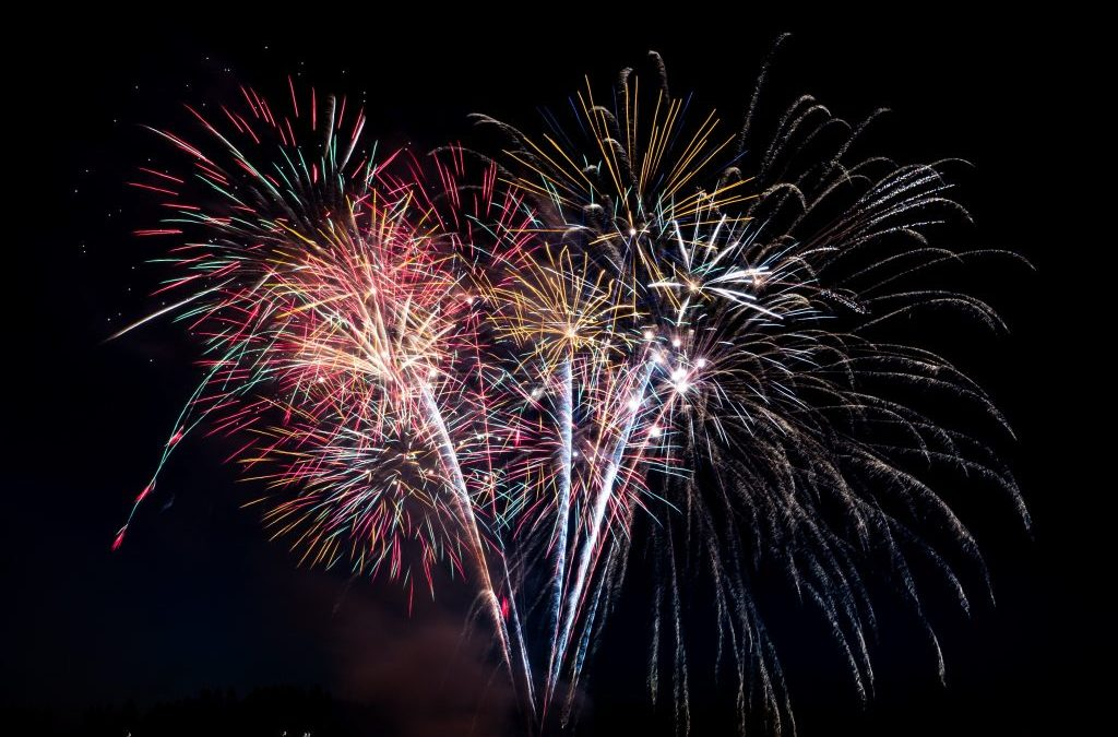 Keep your Pets Safe During Fireworks Season