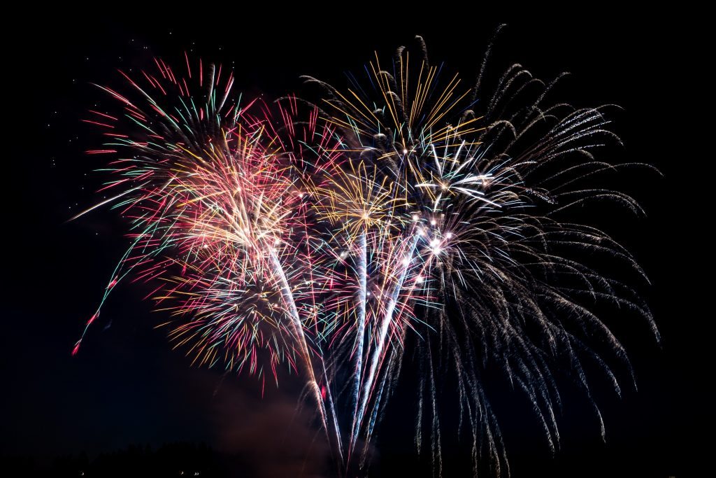 keep your pets safe during the Firework season